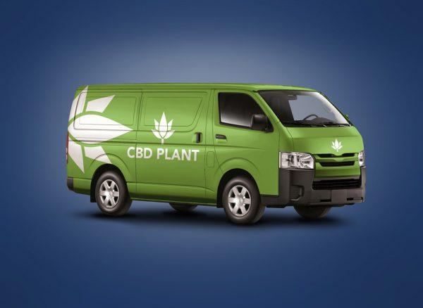 CBD plant logo design