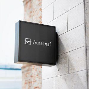 CBD logo design AuraLeaf